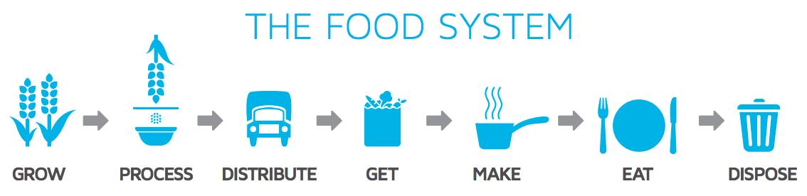 food_system