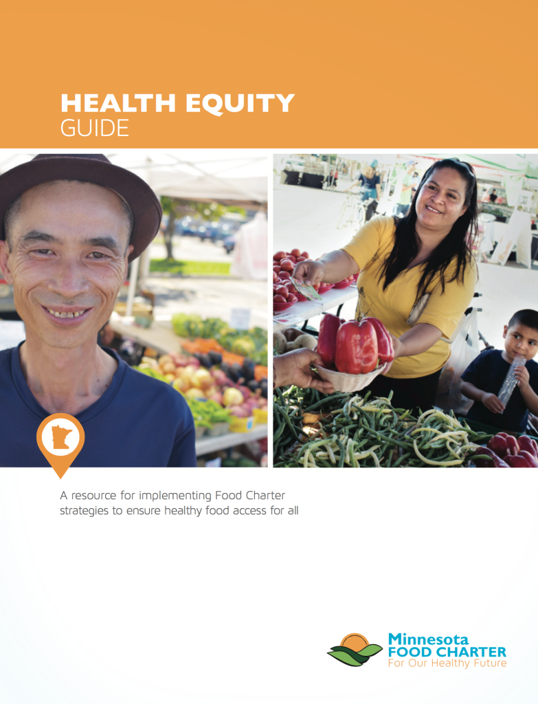 Health Equity Guide